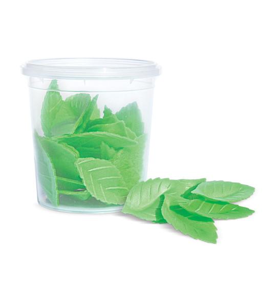 Décos azymes 24 feuilles vertes