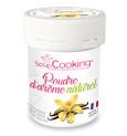 Poudre d'arôme naturel vanille biologique