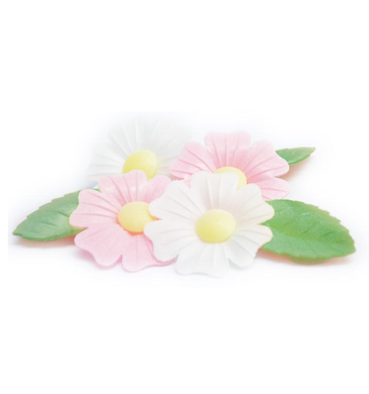 Fleurs azyme églantines/feuilles vertes