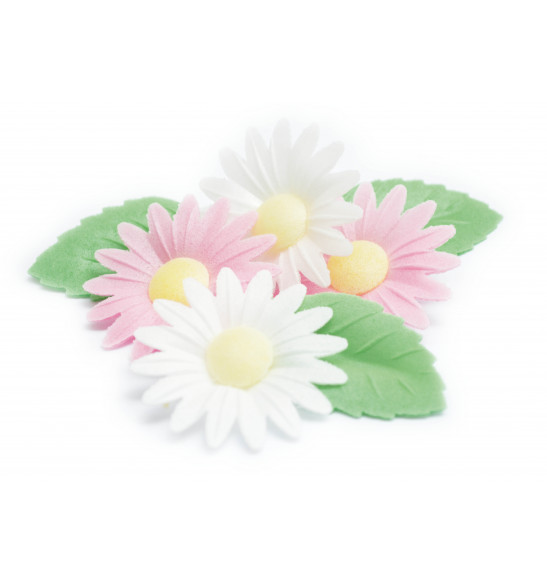 Edible wafer decorations 6 daisies + 6 green leaves