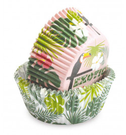 Caissettes Tropical +/- 36 réf.5075