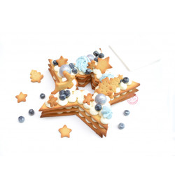 Réalisation étoile Christmas cake réf.3912