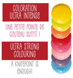 Boite de 9 mini colorants artificiels en poudre réf.4270